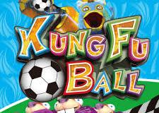 kungfu ball2